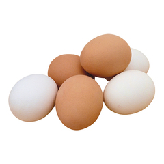Egg png25 copy
